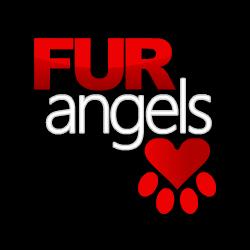Fur Angels Rescue